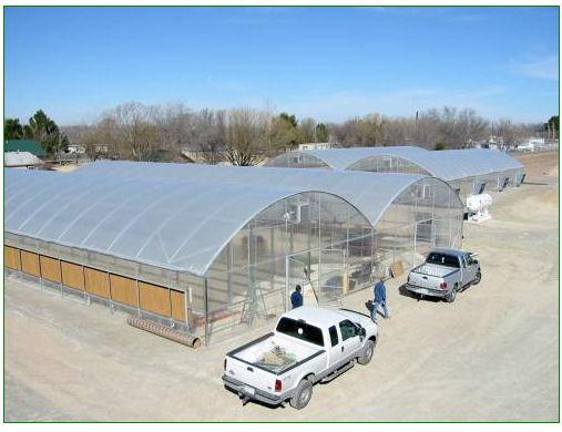 bioreactor-greenhouse
