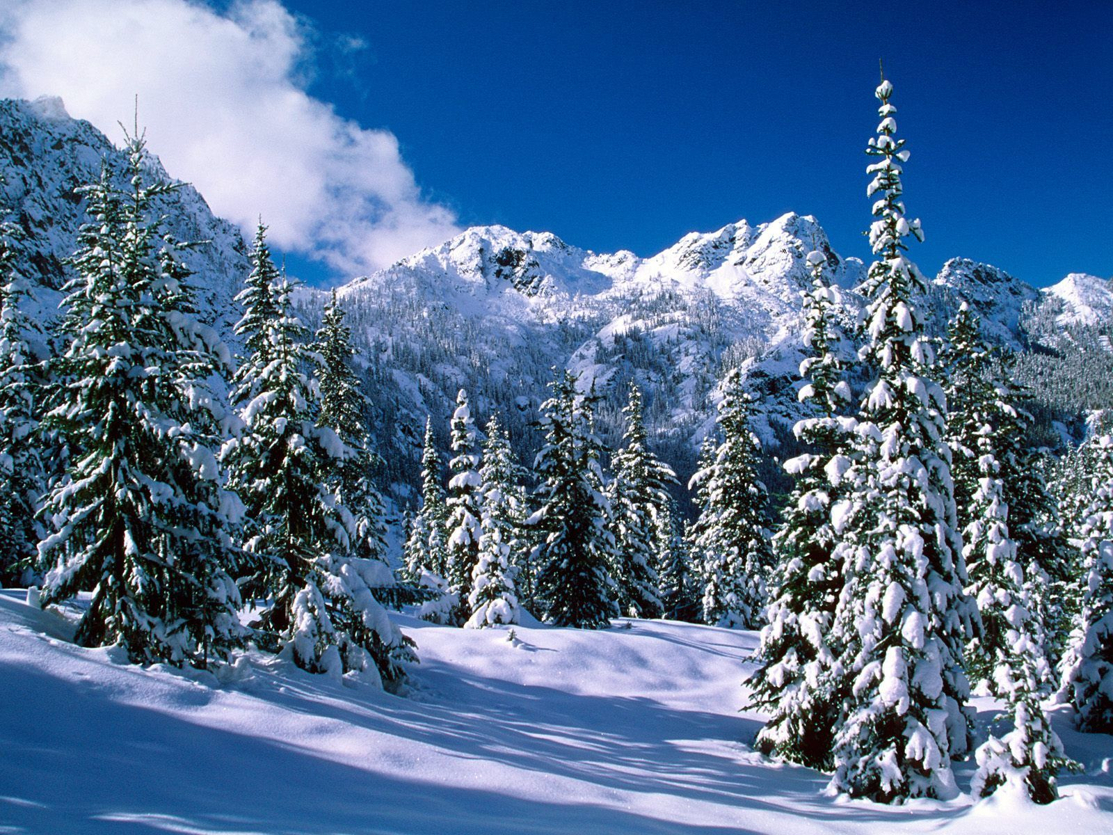 Wonderful Wallpaper Home Screen Snow - snowy_mountains151  HD_628633.jpg